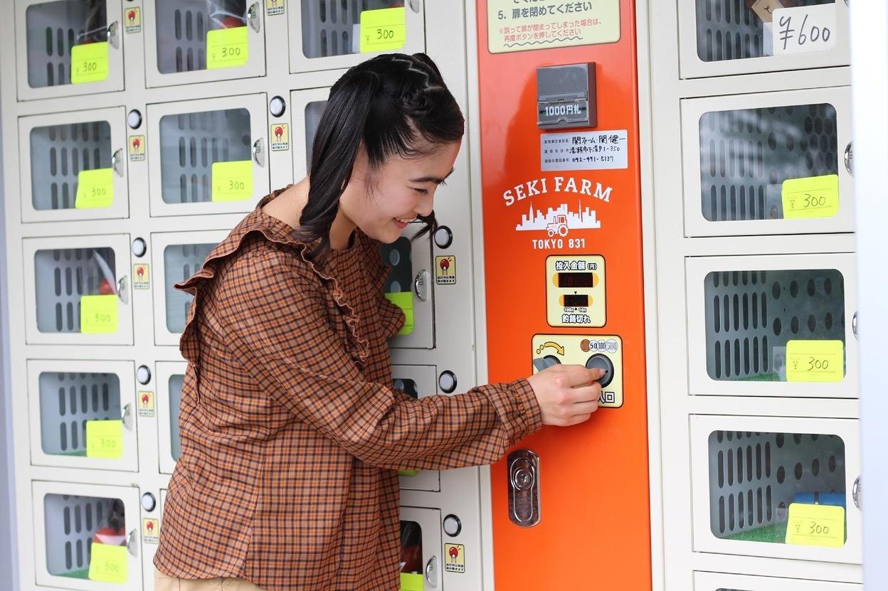 関ファームのコインロッカー型自販機にお金を入れるイノサク