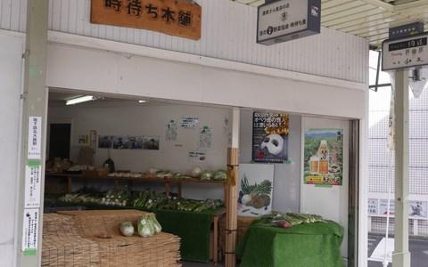 北大路バスターミナルすぐ!農家さん直送の京野菜を楽しめる「京野菜時待ち食」(京都府・京都市)